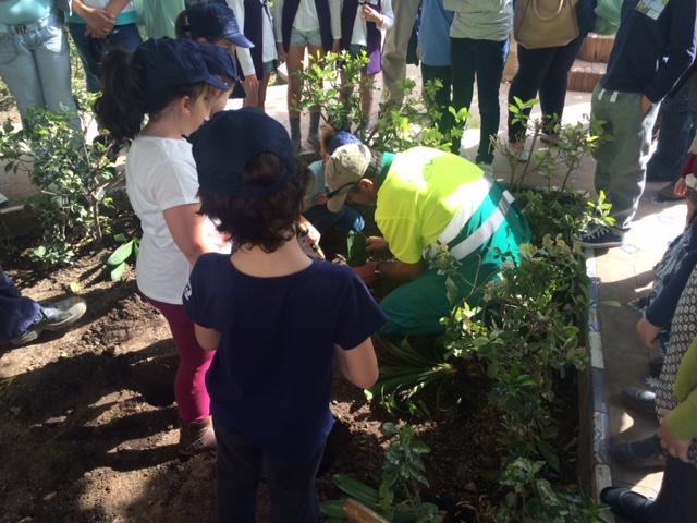 20150418 Haz de tu Plaza un Jardín (4)