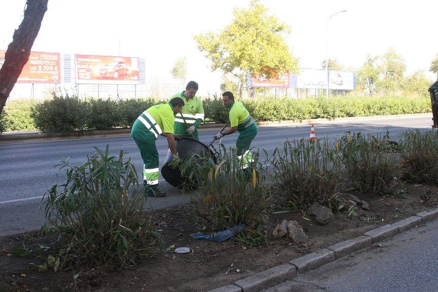Tras la poda de las adelfas y setos ha aparecido basura acumulada que los trabajadores también están retirando.