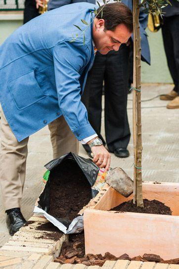 Este árbol lo planté el pasado 7 de junio en el colegio San Juan de Ribera con motivo de una acto por la paz organizado por la Fundación Alberto Jiménez-Becerril.