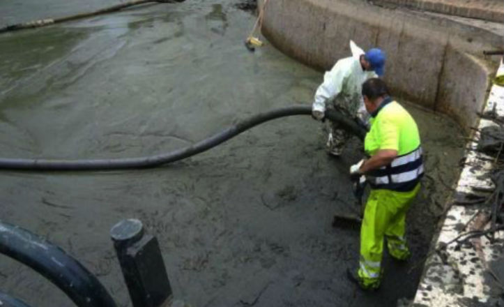 limpieza estanque Parque Amate