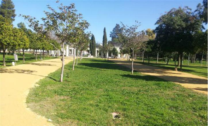 caminos-albero-cerro-amate