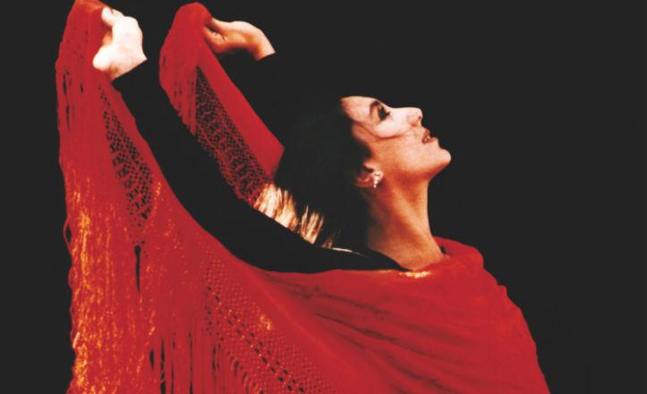 Presentación de un libro sobre el flamenco
