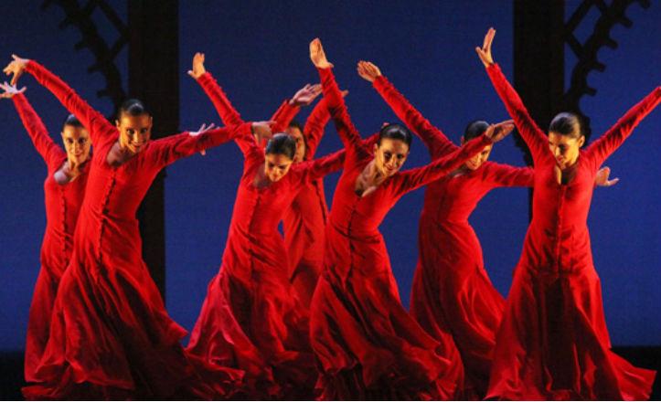 Flamenco en red en el Cicus