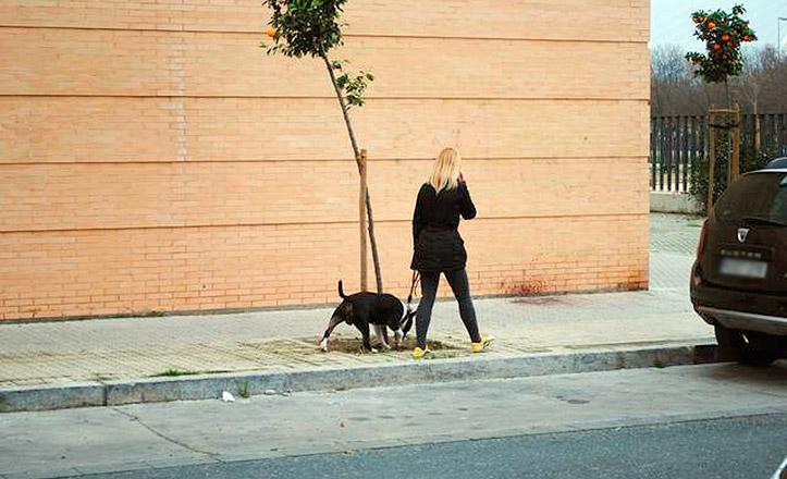 Una mujer con su perro por San Jerónimo