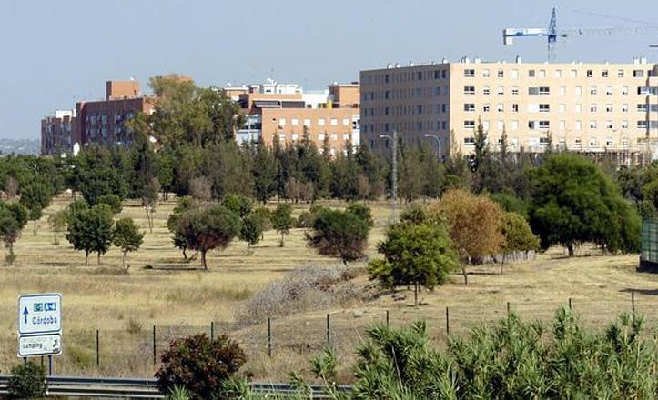 El Ayuntamiento acondicionará los accesos peatonales al Parque Tamarguillo
