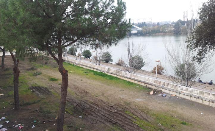 El Ayuntamiento está limpiando y acondionando esta zona del Paseo Juan Carlos I, en la que se instalará el nuevo pipican.