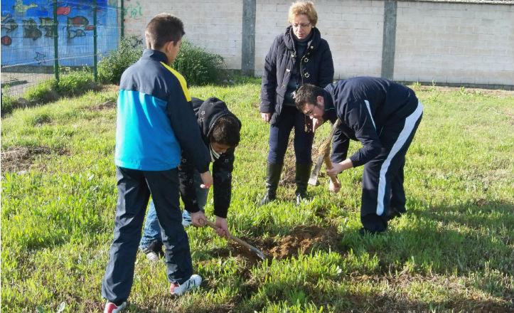 Alumnos del instito Antonio Domínguez Ortiz plantando árboles