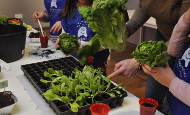 Taller de horticultura para niños
