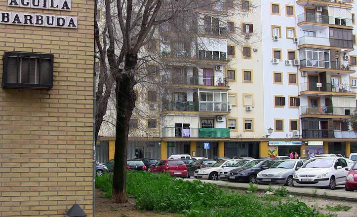 calle-aguilabarbuda-terreno