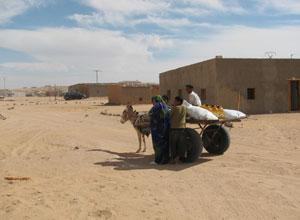 La Asociación de Amistad con el Pueblo Saharaui está en Los Remedios