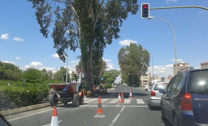 Operarios arreglando el tramo de la avenida de Jerez