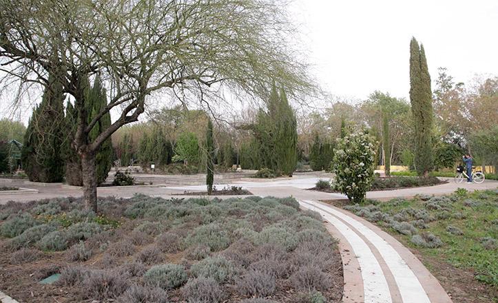 jardin-americano