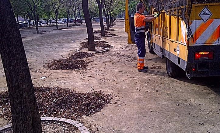 Trabajos de limpieza en la Avenida de la Paz