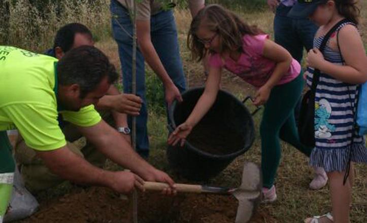 plantacion-arbol-parque-tamarguillo