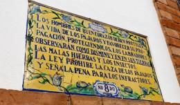 Altos Colegios de la Calle Feria, SEvilla