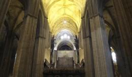 catedral.18.07.13.02.jpg