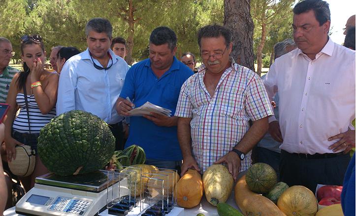 concurso-hortalizas-parque