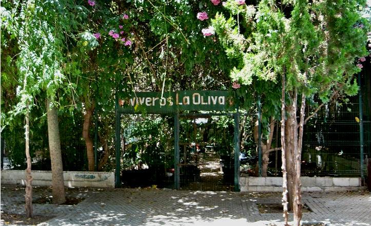 vivero-jardines-oliva