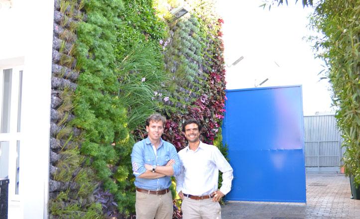 El St. Mary's School inaugura mañana su jardín vertical y en superficie