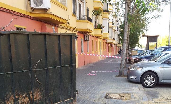 Podas en la calle Federico Mayo Gallarre