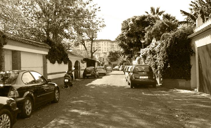 La calle Martín Alonso Pinzón, ejemplo de calle americana