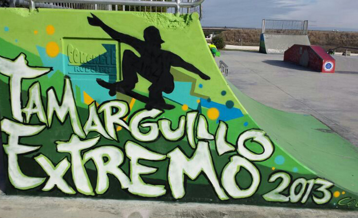 skate-tamarguillo
