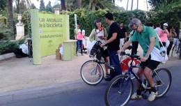 Marcha ciclista este domingo de la Alameda al parque del Alamillo