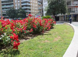 La Plaza de Cuba, el primer proyecto urbanístico de Los Remedios