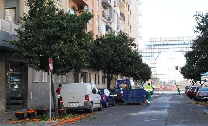 Más de 3.000 kilos de naranjas recogidas en Los Remedios