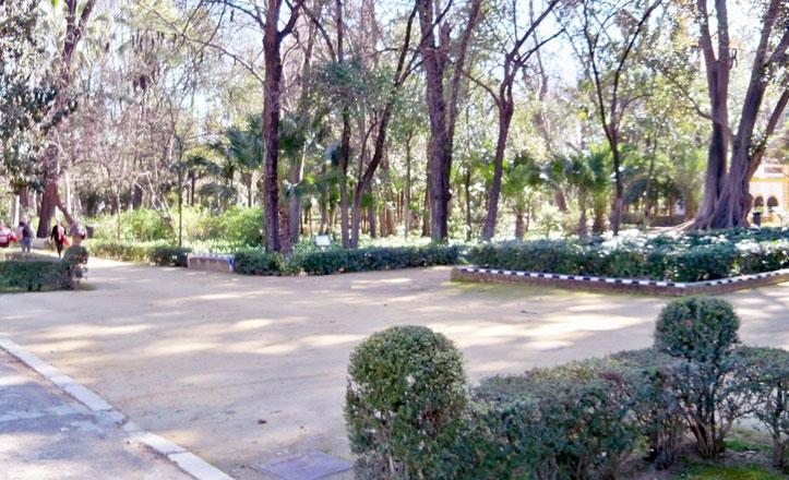 Nicolás Forestier y el Parque de María Luisa
