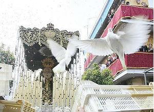 Petalada a la Virgen de los Dolores