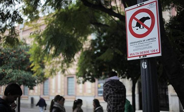 Detalle de la Ordenanza municipal que multa los excrementos de perro en la vía pública