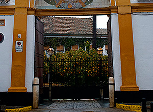 Palacio Dueñas