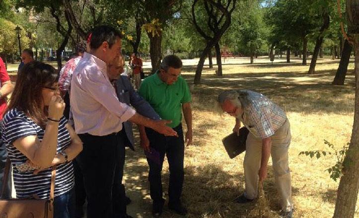 Espadas tilda de «engaño» que Zoido anuncie en Parque Amate la misma inversión de 2012