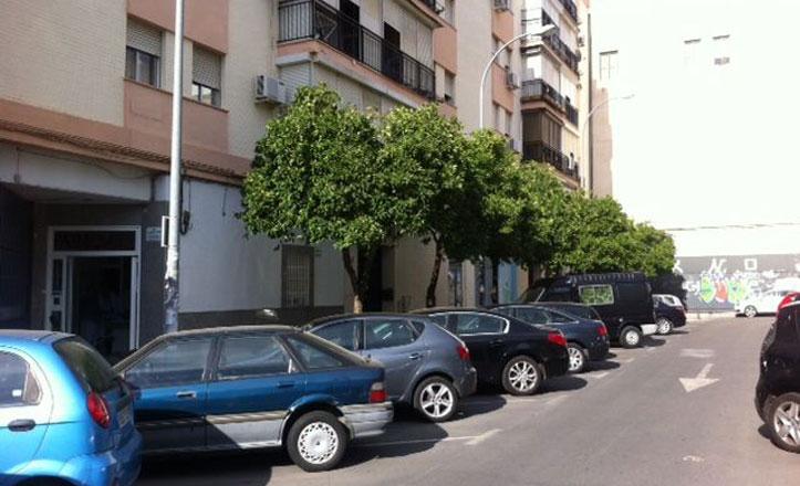 Concluye la poda de la calle Juglar y la avenida Luis de Morales