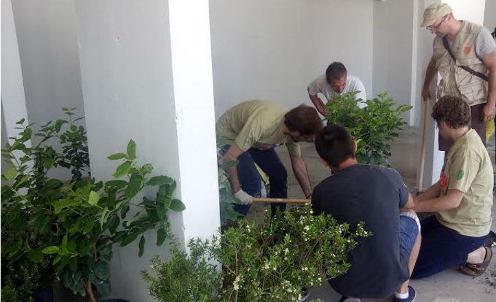 vecinos-plantando
