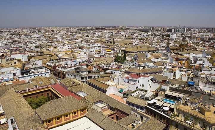 El Palacio Arzobispal abre esta visión del puro centro de Sevilla, del que destaca la esbeltez del templo de Santa Cruz
