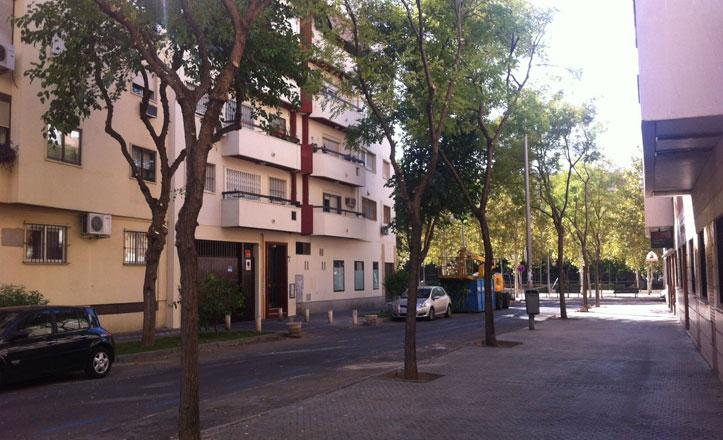 Podas en las calles Moreno Galván, Fuenteovejuna y Juan Sierra