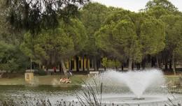 La laguna artificial, con su pomposa fuente, es uno de los principales reclamos del Parque Infanta Elena / Fran Piñero