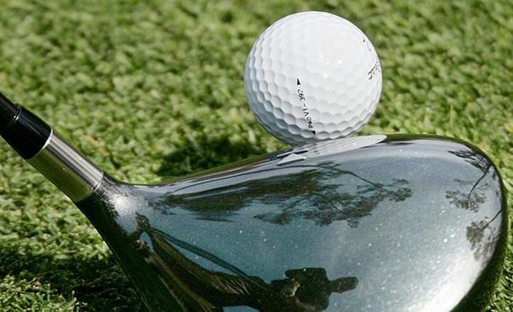 IU pedirá la «paralización inmediata» del proyecto del campo de golf en Los Bermejales