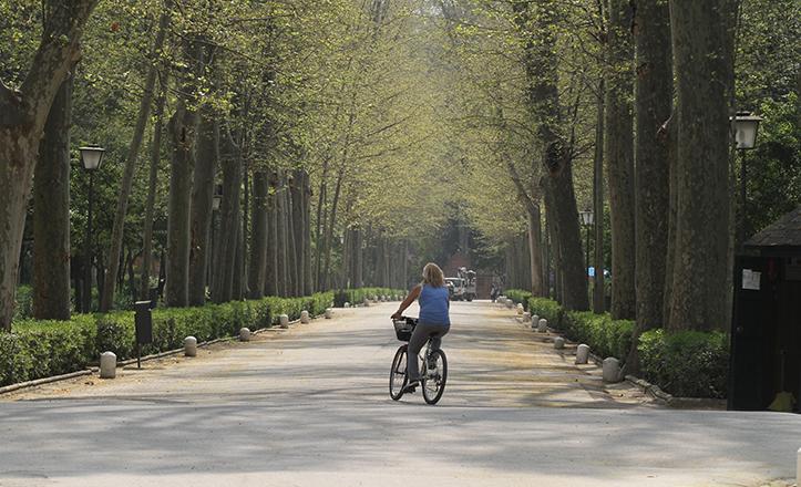 El alumbrado público del Parque de María Luisa se verá modernizado tras un proyecto de la Gerencia de Urbanismo / Rocío Ruz