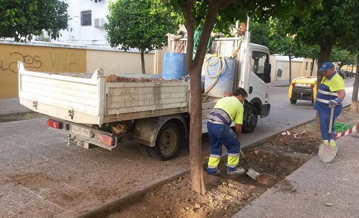 Obras en los alcorques de la calle Cereza, en la barriada del Carmen