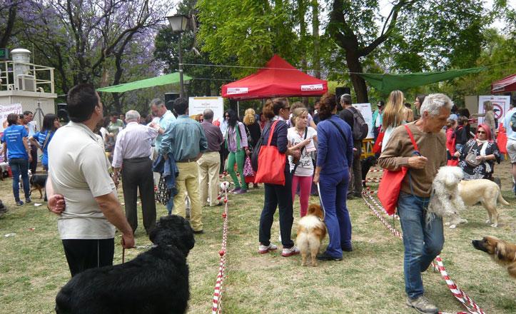 El Festival Canino regresa este sábado al Parque de los Príncipes