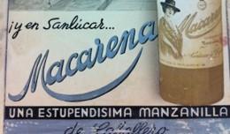 manzanilla-macarena