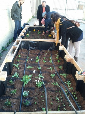 Los alumnos del Taller de Jardinería ultiman el sistema de riego
