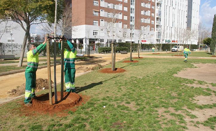Plantación de nuevos árboles en el Parque Gran Vía