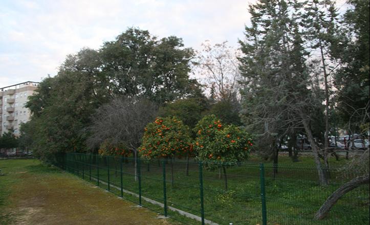Futuro Parque Maestro José Pizarro