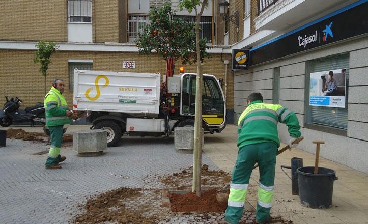 Campaña de plantación de árboles en el Distrito Macarena