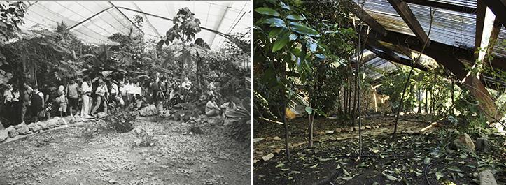 El umbráculo, rehabilitado en 2010, creaba el ambiente húmedo de la selva amazónica / Archivo - F. Piñero
