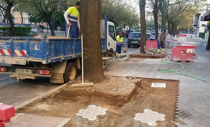 Obras en los alcorques de Alcalde Manuel del Valle